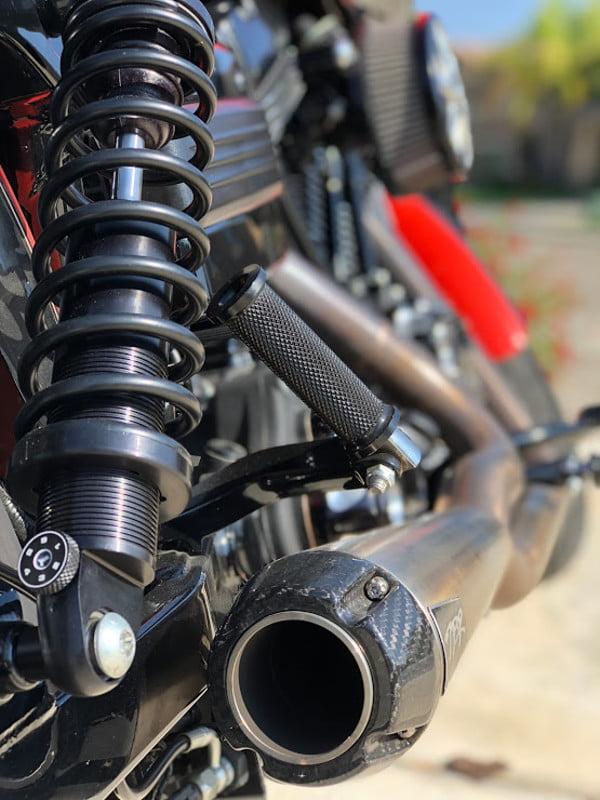 2009 Harley Davidson FXDL Dyna Low Rider Gumbi